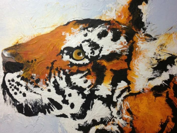 Captivated – (Tiger)